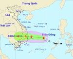 Sẵn sàng sơ tán khẩn cấp dân cư khi bão số 5 đổ bộ