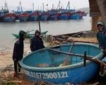 Phú Yên, Bình Định sẵn sàng dời dân, sơ tán để đón bão số 5