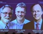 Nobel Y Sinh 2019 vinh danh khám phá về tế bào