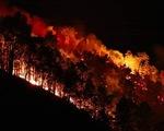 4 năm cả nước mất 6.400ha rừng do cháy