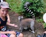 Động vật hoang dã phải được nuôi trong môi trường hạnh phúc