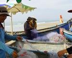 Bà Rịa - Vũng Tàu thu hồi đất dự án, trả lại bãi biển cho ngư dân và cộng đồng