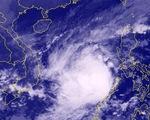 Bão số 6 đang mạnh lên, tăng tốc về hướng Quảng Ngãi - Khánh Hòa