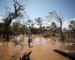 2019 - năm thế giới thức tỉnh về biến đổi khí hậu