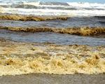 Nước biển gần Khu kinh tế Dung Quất đen, nổi bọt vàng bất thường