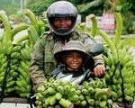 Ngắm những khoảnh khắc yêu thương gia đình ở khắp nẻo Việt Nam
