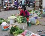 TP.HCM chỉ đạo khẩn: Chấm dứt hoạt động chợ tạm Cô Giang