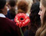 Livestream vụ xả súng ở New Zealand: Các ông lớn công nghệ bất lực