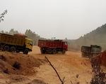 Bình Định: doanh nghiệp đào đất trồng rừng san lấp công trình