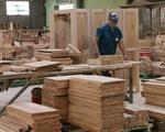 Thủ tướng ra chỉ thị để phát triển ngành gỗ