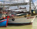 Ngân hàng khởi kiện chủ tàu cá nợ xấu