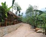 Khu nghỉ dưỡng đẹp tuyệt... xây chui trong rừng phòng hộ