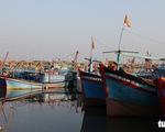 Việt Nam đang xác minh vụ tàu cá Quảng Ngãi gặp nạn ở Hoàng Sa