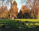 Hẹn hò, picnic, phơi nắng và cả... hôn nhau ở nghĩa trang