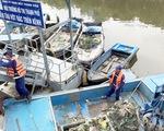Cá lại chết nổi trên kênh Nhiêu Lộc - Thị Nghè