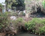 Nhiều cơ sở sản xuất xả nước thải trực tiếp ra sông Dương Đông