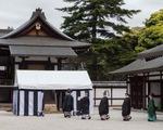 Hoàng gia Nhật đốt mai rùa tìm đất trồng lúa