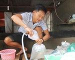 Những người trẻ của đảo Lý Sơn - Kỳ 1: Chàng kỹ sư đi bán cá