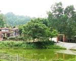 Phạt người xây nhà thờ tộc trái phép ở đất rừng 20 triệu đồng