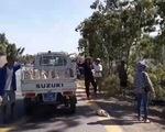 Lật xe chở gần 2.000 con vịt, người giúp tài xế, người ra tay