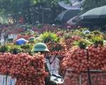 Vào chính vụ vải thiều Bắc Giang vẫn 60.000 đồng/kg