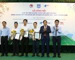 Tám đội tham dự VCK giải bóng đá U17 Quốc gia 2019