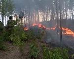 Hàng trăm hecta rừng trồng cháy ngùn ngụt cả ngày