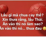 CĐV Việt Nam