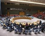 Việt Nam trúng cử ủy viên không thường trực HĐBA Liên Hiệp Quốc