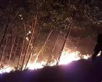 150 ha rừng keo cháy ngùn ngụt, quân dân Quảng Nam trắng đêm dập lửa