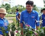 Chiến sĩ Mùa hè xanh về giúp dân xây dựng nông thôn mới