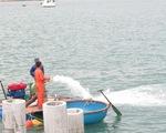 Hiện vật thu được không đáng kể, tạm dừng khai quật tàu cổ chìm ở Dung Quất