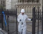 Đóng cửa hai trường học do lo nồng độ chì từ Nhà thờ Đức Bà Paris