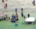 Dựng lều trên mặt biển giải cứu cá voi mắc cạn