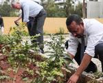 Trồng hơn 353 triệu cây trong 12 giờ để chống biến đổi khí hậu