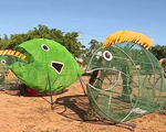 """Mô hình độc đáo """"cá biển ăn rác thải nhựa"""" ở đảo Lý Sơn"""