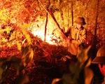Suốt đêm cứu rừng cháy đỏ đất đỏ trời ở Hà Tĩnh