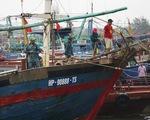 Chủ động sơ tán dân, không để người dân ở trên tàu thuyền khi bão vào