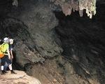 Khám phá vùng rừng Ozo giữa Vườn quốc gia Phong Nha - Kẻ Bàng