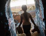 Úc kêu gọi có biện pháp với cáo buộc lạm dụng lao động trẻ em ở Campuchia