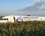 Va phải đàn chim trời, máy bay Nga buộc hạ cánh giữa đồng
