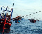 Phản đối tàu Trung Quốc đâm chìm tàu cá Quảng Ngãi ở Hoàng Sa