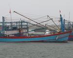 Tàu hàng gồm 10 thuyền viên mất liên lạc tại vùng biển Quảng Trị