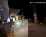 Video cảnh sát, gia đình gấu giải cứu gấu con kẹt trong thùng rác gây bão mạng