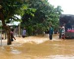 100 bè cá trôi dạt, một người bị nước cuốn mất tích ở Đồng Nai