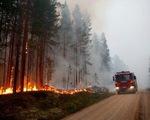 Sau Amazon, thảm họa cháy rừng lan tới... Bắc Cực