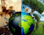 Trong khi thế giới biểu tình, bạn làm gì để chống biến đổi khí hậu?