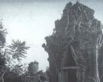 Cổ viện Chàm - Những chuyện chưa biết - Kỳ 2: Phát lộ nền văn minh