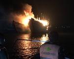 2 tàu cá cháy trụi nghi do chủ tàu đốt thuốc xông