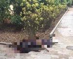 Gã nghiện truy sát vợ chồng hàng xóm khiến 2 người thương vong